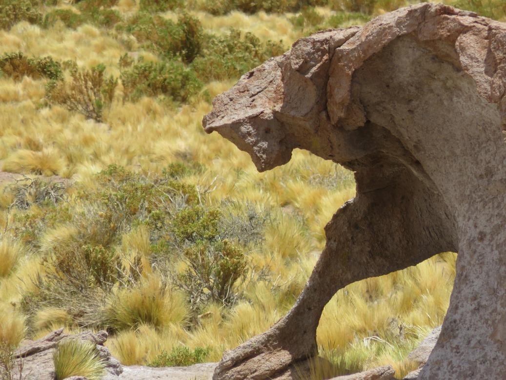SanPedro de Atacama9